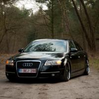 Audi A6 in de bossen USL